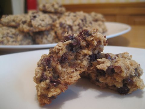 Low Fat Oatmeal Gooey Goodness