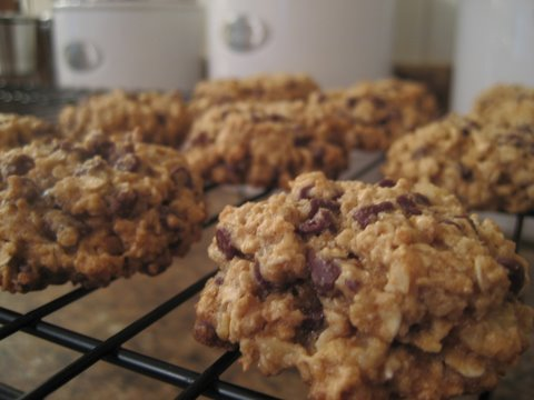 Oatmeal Cookies on cooling tray